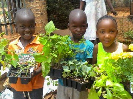 kids-food-gardening-r-e1566227882921